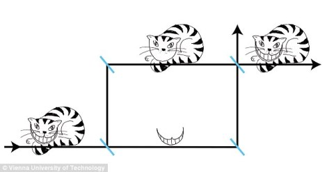 Scientists have observed for the first time a weird quantum phenomenon known as the 'Cheshire Cat' effect (illustration shown). The 'cat' in question was a subatomic neutron particle, and the ghostly 'grin' the particle's magnetic moment, which describes the strength of its coupling to an external magnetic field. (Credit: Vienna U)
