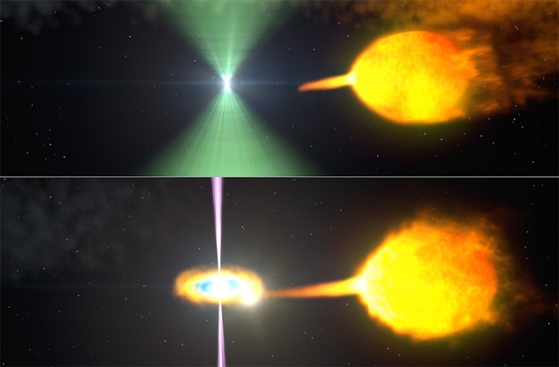 These artist's renderings show one model of pulsar J1023 before (top) and after (bottom) its radio beacon (green) vanished. Normally, the pulsar's wind staves off the companion's gas stream. When the stream surges, an accretion disk forms and gamma-ray particle jets (magenta) obscure the radio beam. NASA's Goddard Space Flight Center
