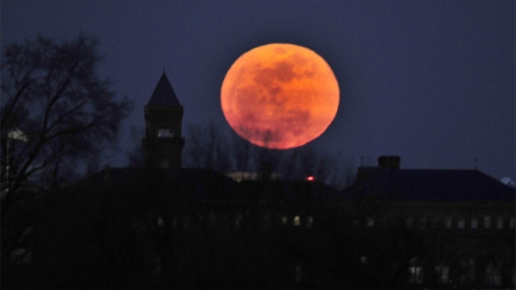 "A perigee moon rises in Washington, DC, on March 19, 2011. A perigee moon is visible when the moon's orbit position is at its closest point to Earth during a full moon phase. The full moon coincided with its closest approach to the Earth, 221,565 miles (356,575 km), making the so-called ""super moon"" look slightly larger than average. AFP PHOTO / Jewel Samad (Photo credit should read JEWEL SAMAD/AFP/Getty Images)"