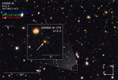 This image shows observations of a newly discovered galaxy core dubbed GOODS-N-774, taken by the NASA/ESA Hubble Space Telescope's Wide Field Camera 3 and Advanced Camera for Surveys. The core is marked by the box inset, overlaid on a section of the Hubble GOODS-N, or GOODS North, field (Great Observatories Origins Deep Survey). (Credit: NASA, ESA)