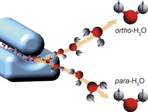 Researchers have separated the nuclear spin states of water. In para water, the spins (depicted as arrows) of water's two hydrogen nuclei cancel out. They add up in ortho water. The scientists produced an ultracold, supersonic beam of water molecules -- a mixture of para and ortho water -- and sent it through an electric deflector (blue device on the left). The deflector acts as a prism for nuclear spin states, separating para and ortho water molecules in space (right). (Credit: Daniel A. Horke, CFEL/DESY)