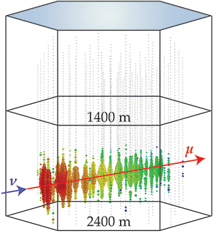 An event in the IceCube neutrino telescope. Photomultipliers attached to strings buried deep in the Antarctic ice detect the bursts of light emitted when a neutrino collides with the ice and produces a muon. The event shown was generated by an upward moving muon, which was produced by an upward moving muon neutrino that passed through the Earth.  APS/Joan Tycko;