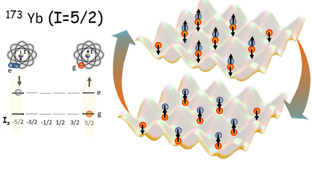 The researchers observed for the first time coherent oscillations between two spin states: |e↑,g↓〉⇔|e↓,g↑〉. From the oscillation frequency, they determine the spin-exchange interaction strength. (Credit: APS/Ana Maria Rey)