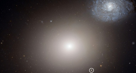 ITTY BITTY LIVING SPACE  The tiny galaxy M60-UCD1 (circled in white) harbors a black hole with the mass of around 21 million suns. M60-UCD1 may be a remnant of a larger galaxy torn apart by the massive galaxy M60 (center), which is also pulling in a nearby spiral galaxy (upper right). (Credit: NASA, ESA)