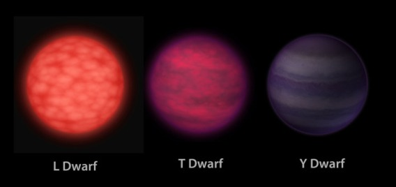 One way that stars are categorized is by temperature. Since the temperature of a star can determine its visual color, this category scheme is known as spectral type. The main categories of spectral type are M, K, G, F, A, B, and O. The coolest stars (red dwarfs) being M, and the hottest stars being O. Our own Sun is a G star. (Credit: B Koberlein, NASA/JPL-Caltech)