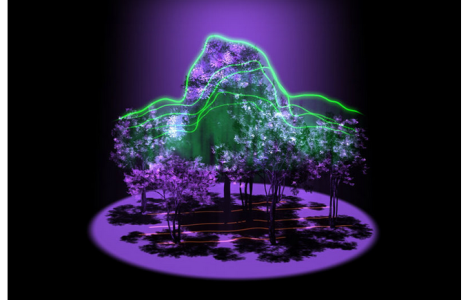 NASA has a new project underway called GEDI. The sole purpose of GEDI is to point a laser-based device at Earth from the International Space Station in order to map out forests in 3D, eventually determining the amount of carbon in Earth's forests. (Credit: NASA's Goddard Space)