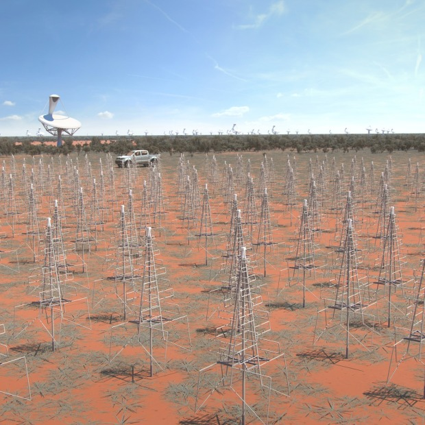 Close up artist rendition. Image of the Australian SKA LFAA (Low Frequency Aperture Array) instrument. These dipole antenna which will number in their hundreds of thousands will survey the radio sky in frequencies as low at 50Mhz (Credit: SKA Organisation)