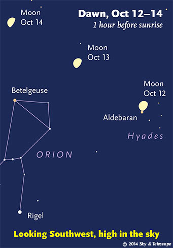 The waning Moon and Orion tip to the southwest as dawn brightens. (The Moon in these scenes is always shown three times its actual apparent size.. (Credit: Sky and Telescope)
