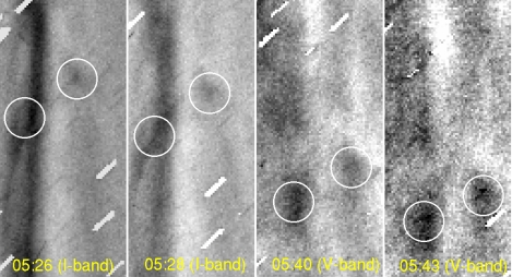 This shows movement of the two clumps in the plasma tail. Time stamps in yellow show the start time of the exposure. White circles indicate the clumps detected in the study. They move away from the nucleus over time. The size of the cutout is about 2500 X 5600 kilometers. The research team calculated the speed of the clumps at 20-25 kilometers per second. Note: Images produced from 2-minute exposures are further processed; background star trails are masked, and unsharp-masked to enhance detailed structures. The masked star trails are seen as short tilted white lines. Credit: the National Astronomical Observatory of Japan. Images processed by M. Yagi.